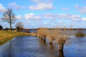 Landgoed De Elsgraven